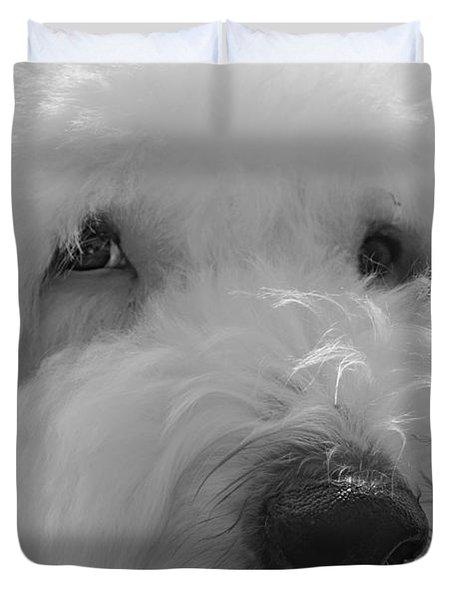 Soulful Eye's Old English Sheep Dog Duvet Cover