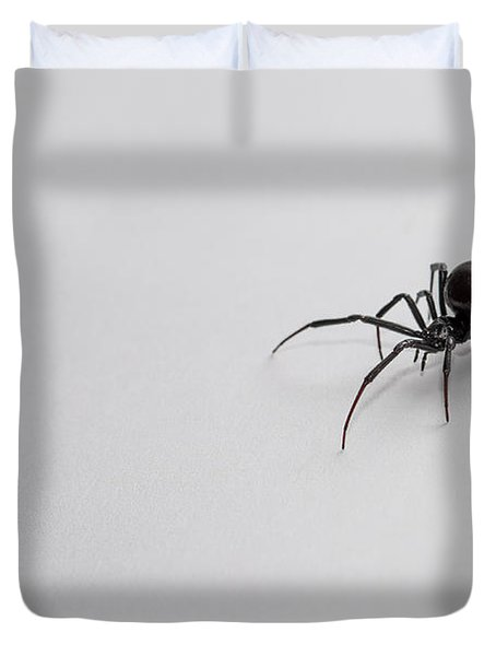 Southern Black Widow Spider Duvet Cover