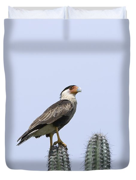 Duvet Cover featuring the photograph Southern Crested-caracara Polyborus Plancus by David Millenheft