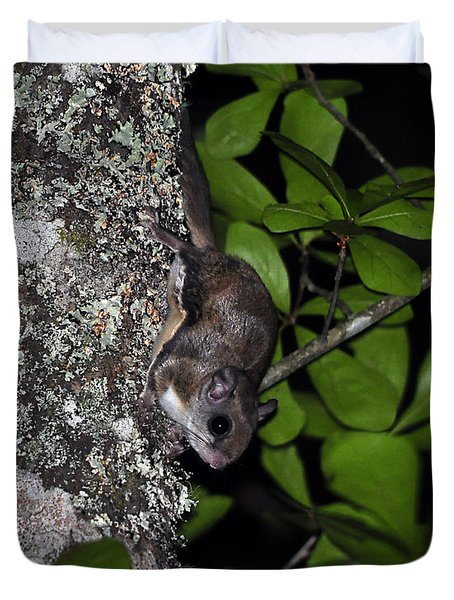 Southern Flying Squirrel Duvet Cover by Al Powell Photography USA