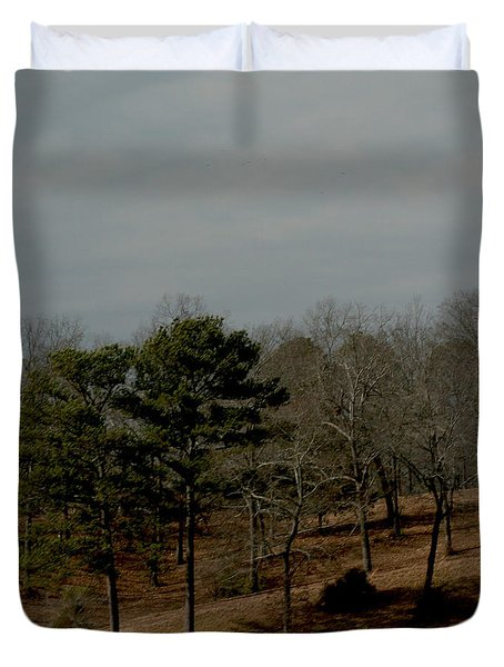 Duvet Cover featuring the photograph Southern Landscape by Lesa Fine