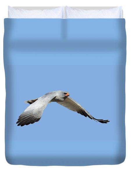 Southern Pale Chanting Goshawk In Flight Duvet Cover