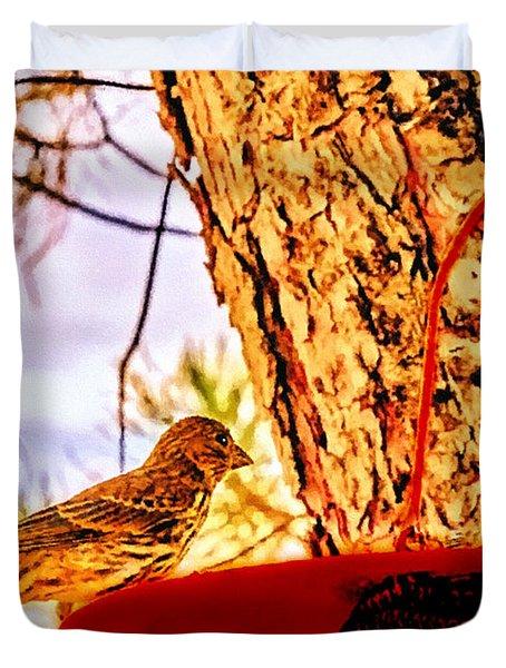 Sparrow Pine Tree Feeder Duvet Cover by Bob and Nadine Johnston