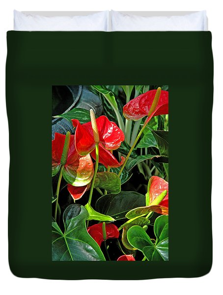 Duvet Cover featuring the photograph Spathiphyllum Flowers Peace Lily by A Gurmankin