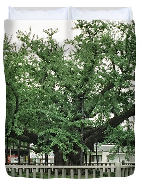Specimen Tree In Temple Courtyard - Kyoto Japan Duvet Cover