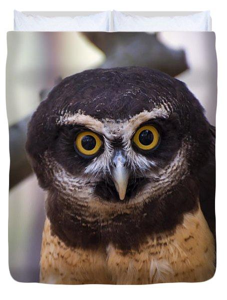 Spectacled Owl Duvet Cover