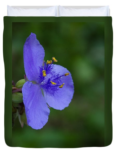 Duvet Cover featuring the photograph Spiderwort #1 by Paul Rebmann