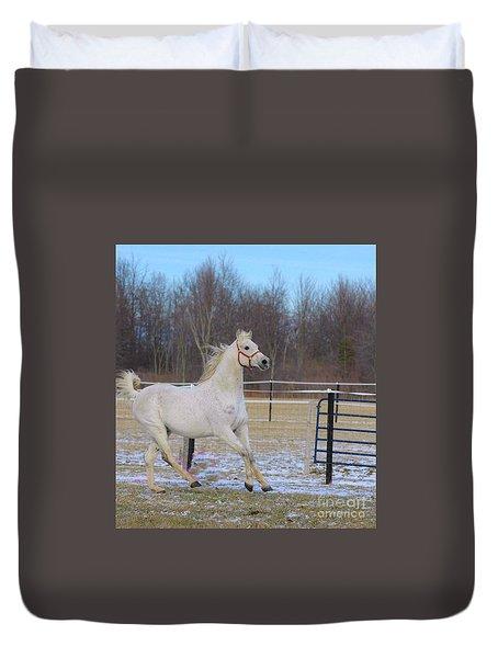 Spirited Horse Duvet Cover by Kathleen Struckle