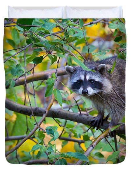 Spokane Raccoon Duvet Cover