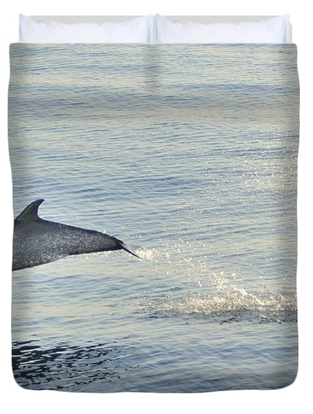 Spotted Dolphin Leaping Duvet Cover