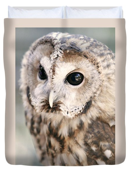 Spotted Owl Duvet Cover