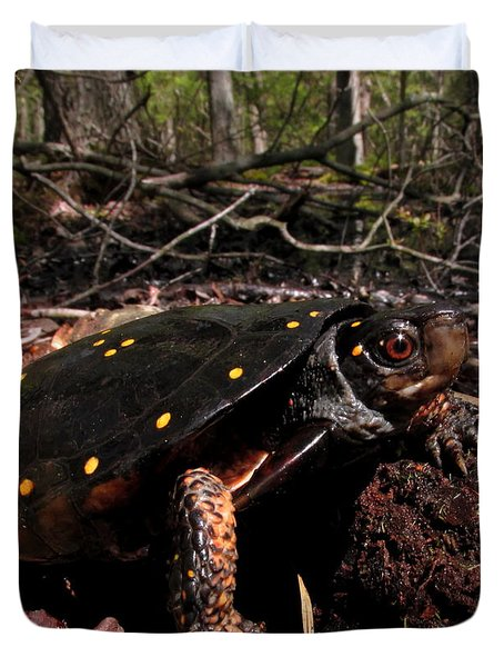 Spotted Turtle Duvet Cover