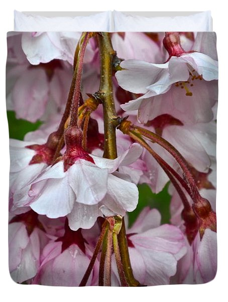 Spring Blossom Duvet Cover by Frozen in Time Fine Art Photography