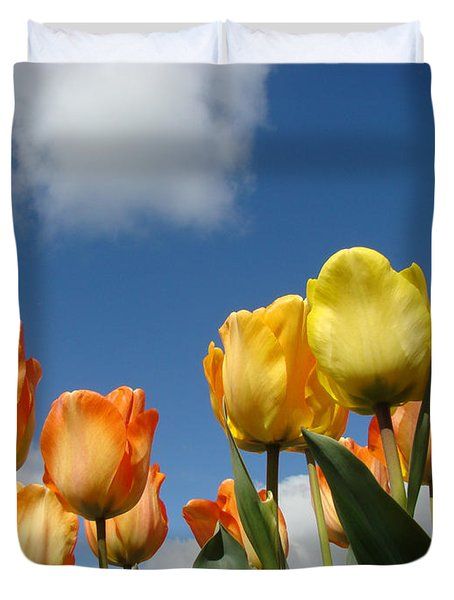 Spring Blue Sky White Clouds Orange Tulip Flowers Duvet Cover by Baslee Troutman