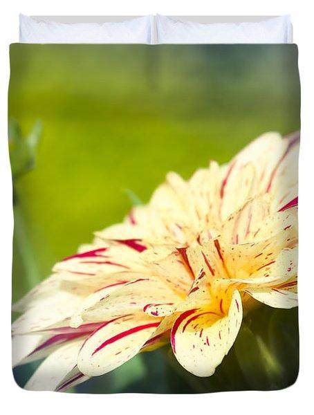 Spring Dream Jewel Tones Duvet Cover