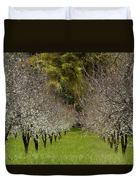 Spring Has Sprung Duvet Cover by Bill Gallagher