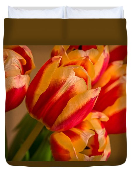 Spring Indoors Duvet Cover