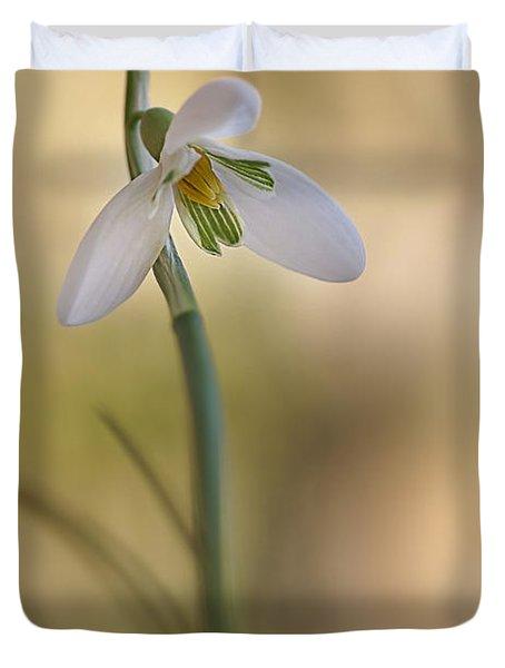 Spring Messenger Duvet Cover