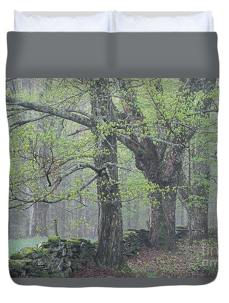 Duvet Cover featuring the photograph Spring Mist by Alan L Graham