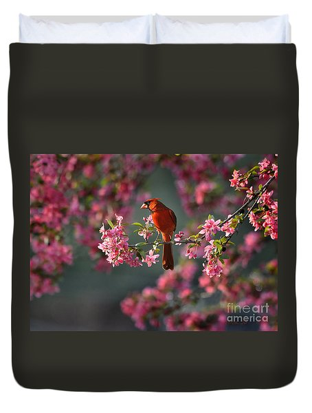 Spring Morning Cardinal Duvet Cover