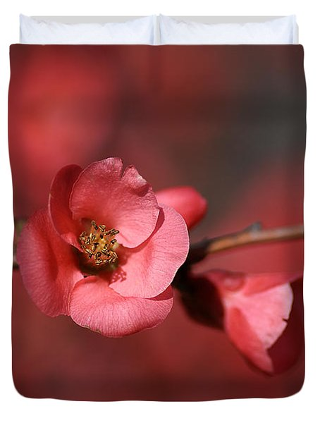 Spring Richness - Flowering Quince Duvet Cover by Joy Watson