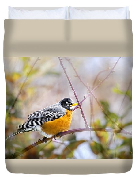 Spring Robin Duvet Cover by Christina Rollo