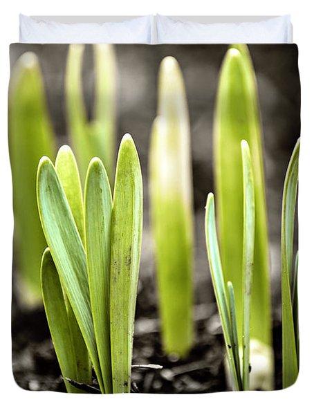 Spring Shoots Duvet Cover by Elena Elisseeva