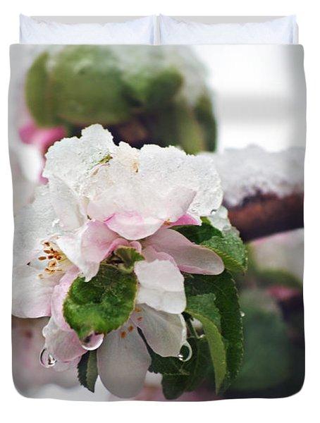 Spring Snow On Apple Blossoms Duvet Cover by Lisa Knechtel