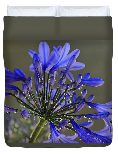 Spring Time Blues Duvet Cover