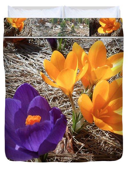 Spring Time Crocuses Duvet Cover by Patricia Keller