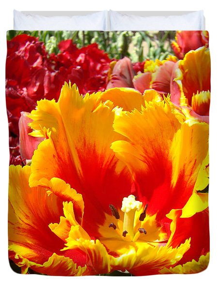 Spring Tulip Flowers Art Prints Yellow Red Tulip Duvet Cover by Baslee Troutman