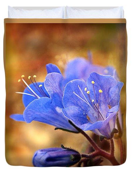 Spring Wildflowers - The Desert Bluebells Duvet Cover