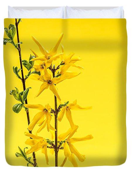 Spring Yellow Forsythia Duvet Cover by Elena Elisseeva