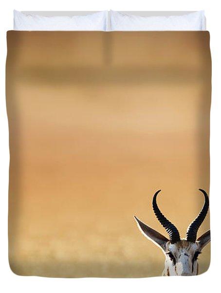 Springbok Resting On Green Desert Grass Duvet Cover