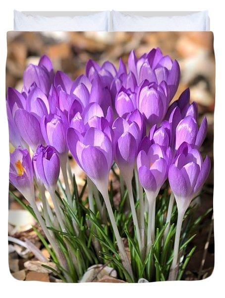 Springflowers Duvet Cover by Gordon Auld