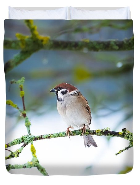 Duvet Cover featuring the photograph Springlike Sleep by Rose-Maries Pictures
