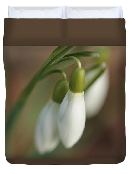 Springtime In Motion Duvet Cover by Connie Handscomb