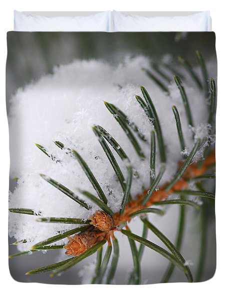 Spruce Branch With Snow Duvet Cover by Elena Elisseeva