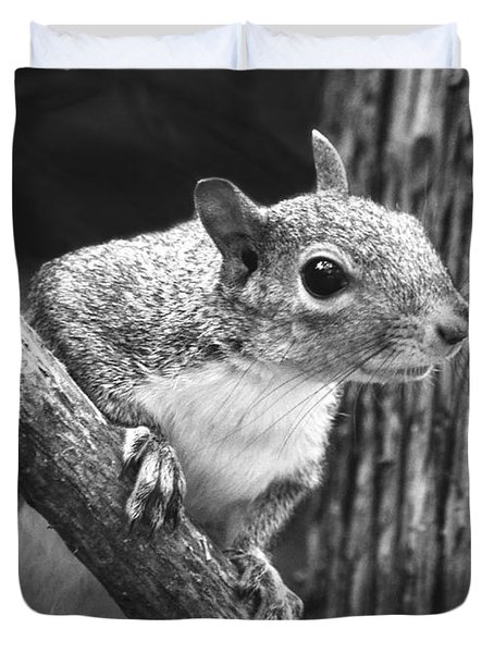 Squirrel Black And White Duvet Cover by Sandi OReilly
