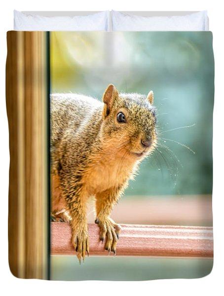 Squirrel In The Window Duvet Cover by LeeAnn McLaneGoetz McLaneGoetzStudioLLCcom