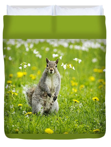 Squirrel Patrol Duvet Cover