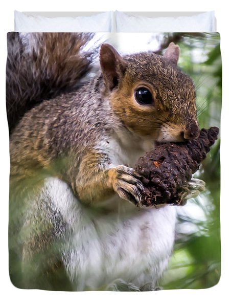 Squirrel With Pine Cone Duvet Cover