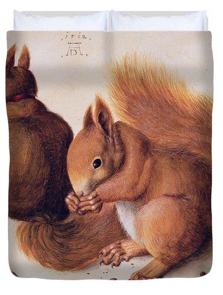 Squirrels Duvet Cover by Albrecht Duerer