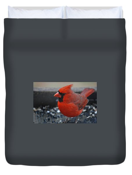 St. Louis Duvet Cover by Skip Willits