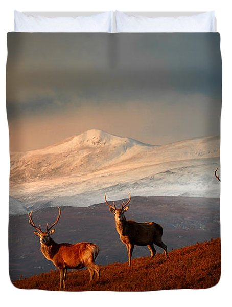 Stags At Strathglass Duvet Cover