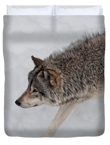 Duvet Cover featuring the photograph Stalker by Bianca Nadeau