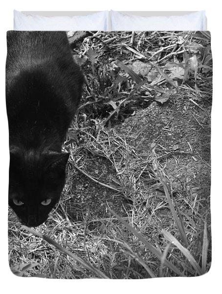 Stalking Cat Duvet Cover by Melinda Fawver