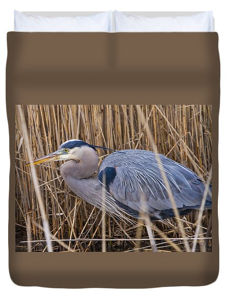 Stalking Fish In The Reeds Duvet Cover