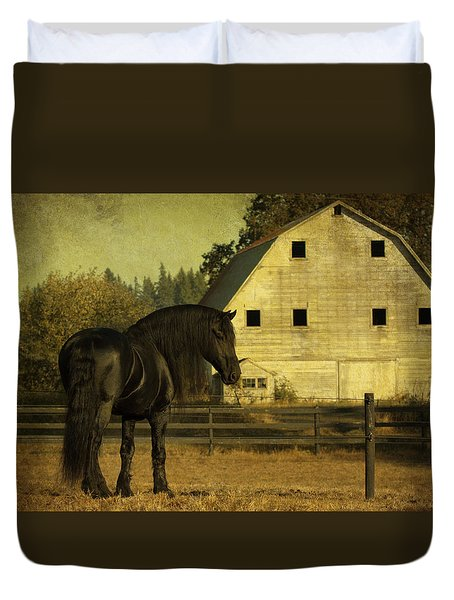 Stallion At Rest D1535 Duvet Cover by Wes and Dotty Weber