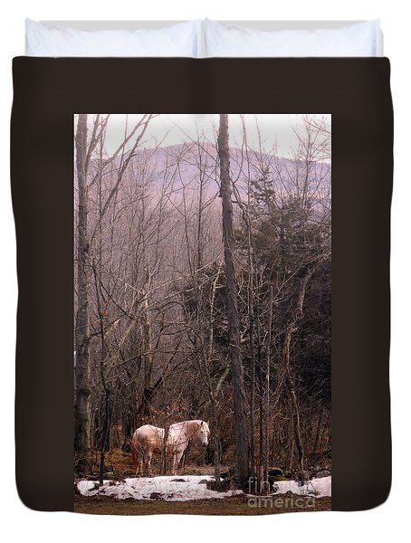 Stallion In The Mountain Pasture Duvet Cover by Patricia Keller